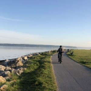 The bike path around Baiter Park on ebike tours 3 and 4